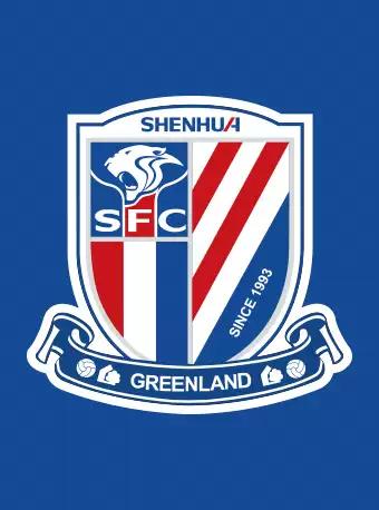 2019赛季足协杯决赛上海绿地申花 VS 山东鲁能